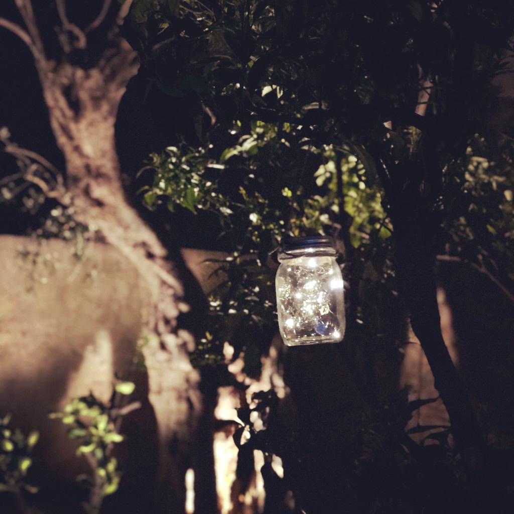 Dettaglio sera
